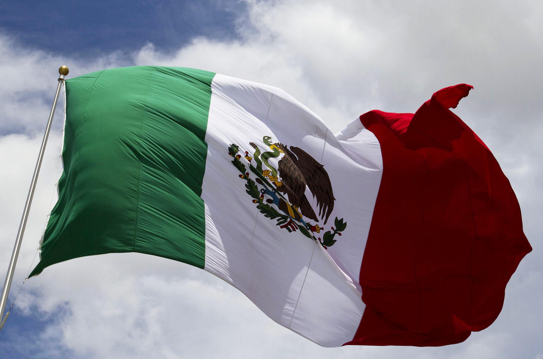 Envíos de Mosquiteras para México